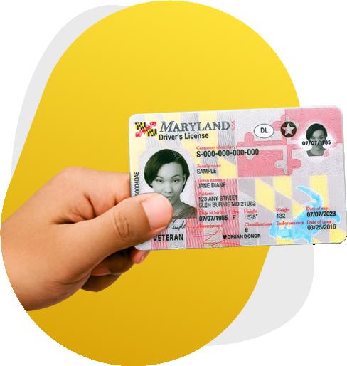 Gov id license